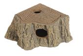 Eckhöhle Stump