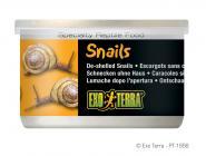 Exo Terra Snails 48g