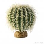 Exo Terra Zylinder Kaktus, M