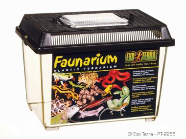 Faunarium klein