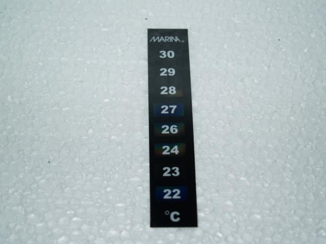 Digital-Thermometer - klein