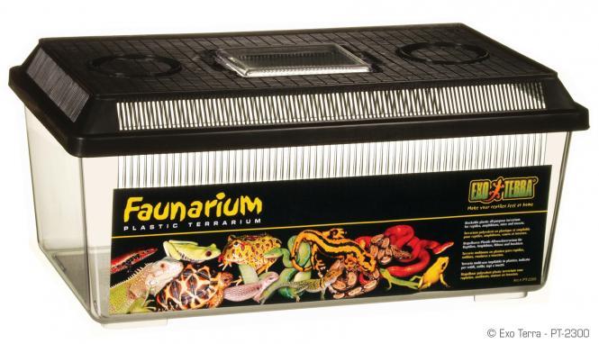 Faunarium flach medium
