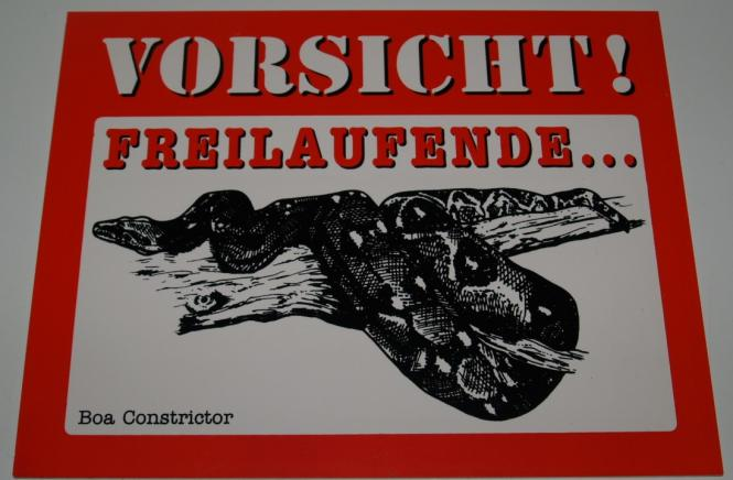 Schild Boa constrictor