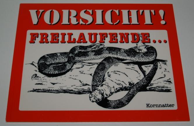 Schild Kornnatter