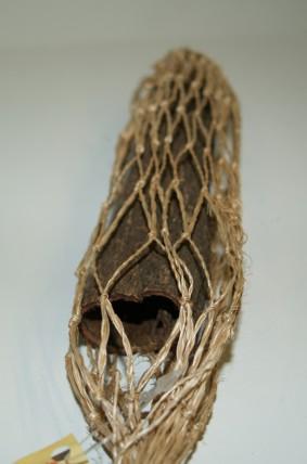 Seemandelbaumrinde Röhre 1 oder 3 Stück